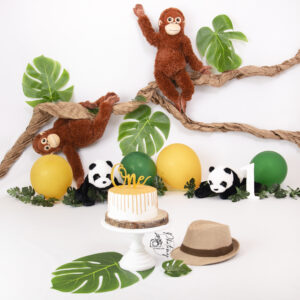 PhotoMY Photography jungle cakesmash website